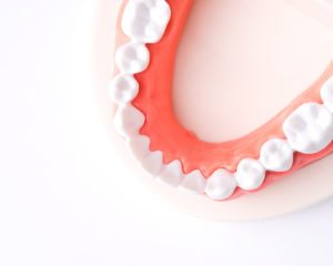 Top view of a set of dentures on a white surface